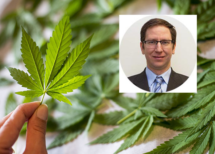 Dr. Ilan Nachim, specialist in family medicine with a particular interest in pain and addiction medicine. Above, marijuana leaves (photo © Tjasulja).