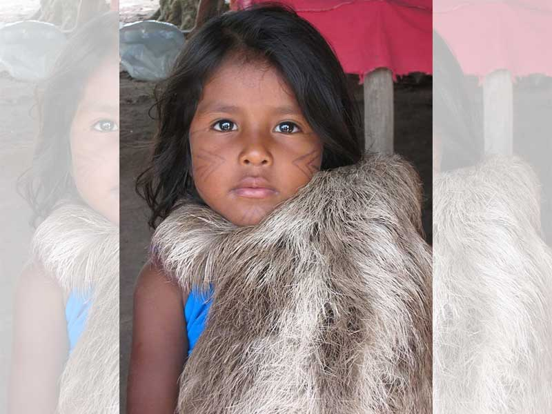 Uma bela menina indígena de cerca de sete anos que olha diretamente para o fotógrafo com olhos jabuticaba e abraça no colo seu bicho preguiça de estimação é a imagem de A foto e o fotógrafo - foto poesia para começar bem o dia